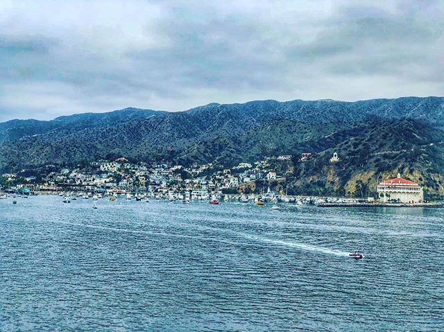 People know Avalon! #socal #cali #carnival #boozecruise #catalina #ensenada